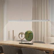 Paul Neuhaus Q-VIOLA LED-hänglampa, RGBW